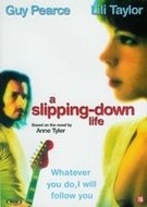 DVD Speelfilm - A slipping-down life